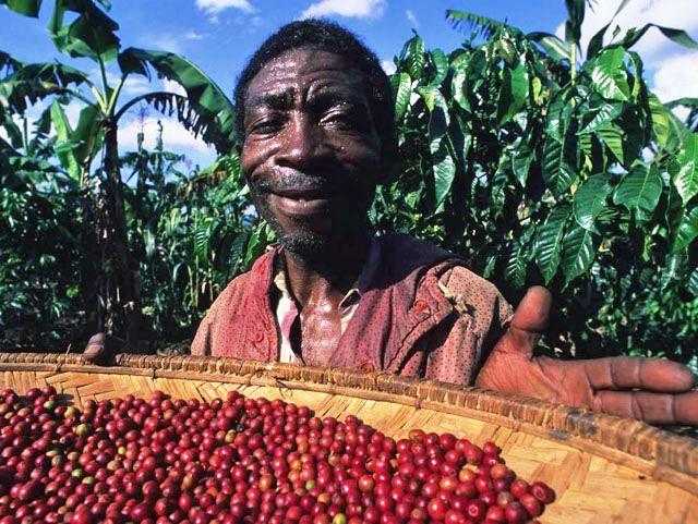 Колумбийский кофе