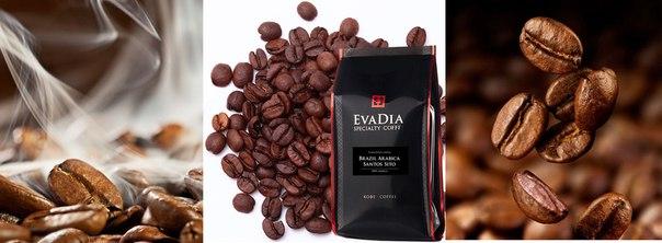 EvaDia зерновой кофе