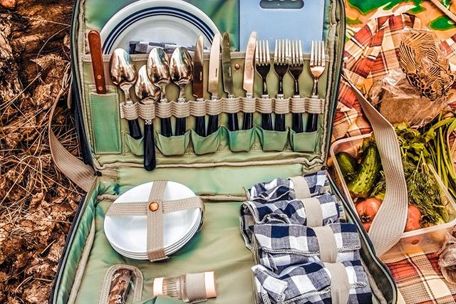 Приборы для пикника